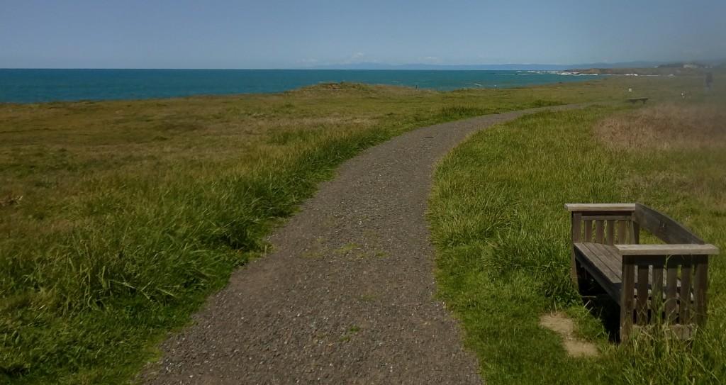 Ocean view path